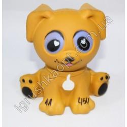 AA454 Собака
